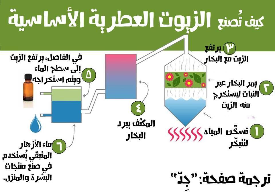 كيف تصنع الزيوت العطرية Map