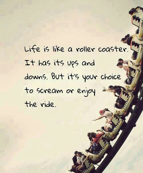 Quote Roller Enchanting Rollercoaster Quote  Words  Pinterest