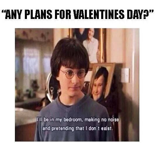 Any Plans For Valentines Day Harry Potter Quotes Really Funny Memes Harry Potter Funny