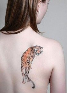 Tiger Tattoo Designs For Men And Women Fashions Plan Tiger Tattoo Design Tiger Tattoo Tattoos