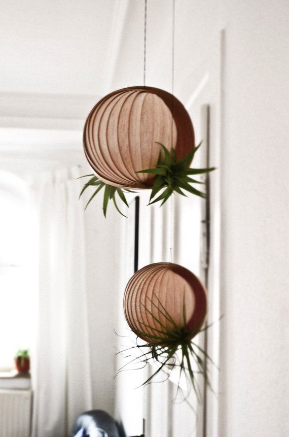 https://www.etsy.com/fr/listing/227183281/hanging-planter-for-air-plants-pflanz?ref=sc_2