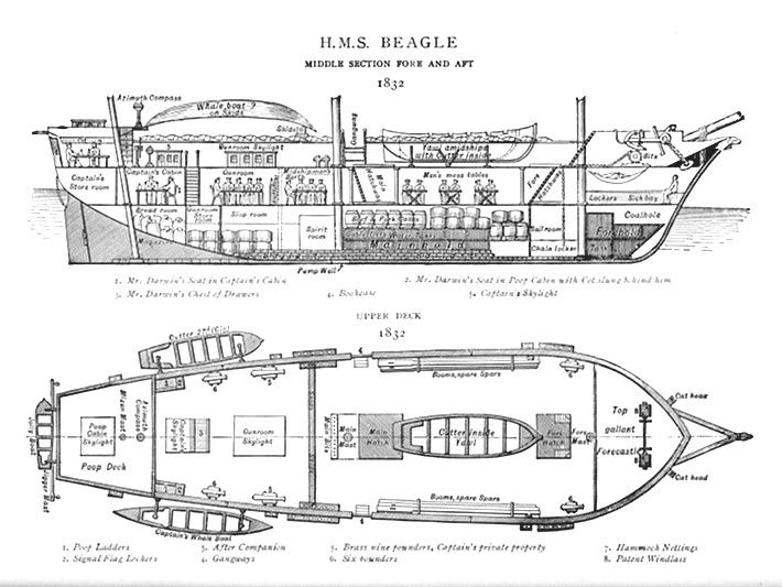 The Beagle Started Life As A Brig And Later Had A Mizzen Mast