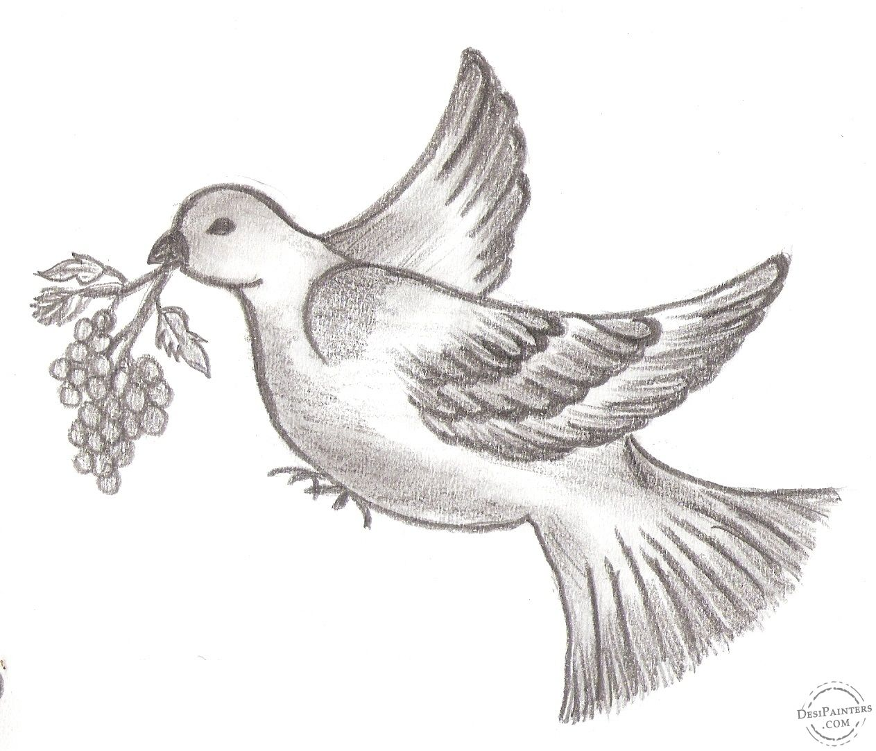 Simple pencil drawing in birds drawing of sketch