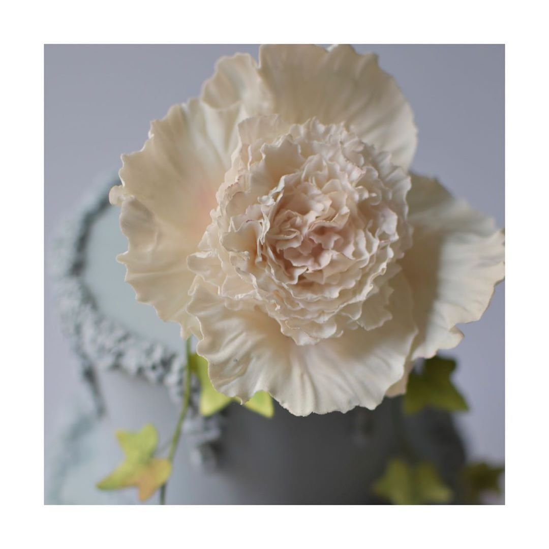 Can you see the golden ratio in our peony