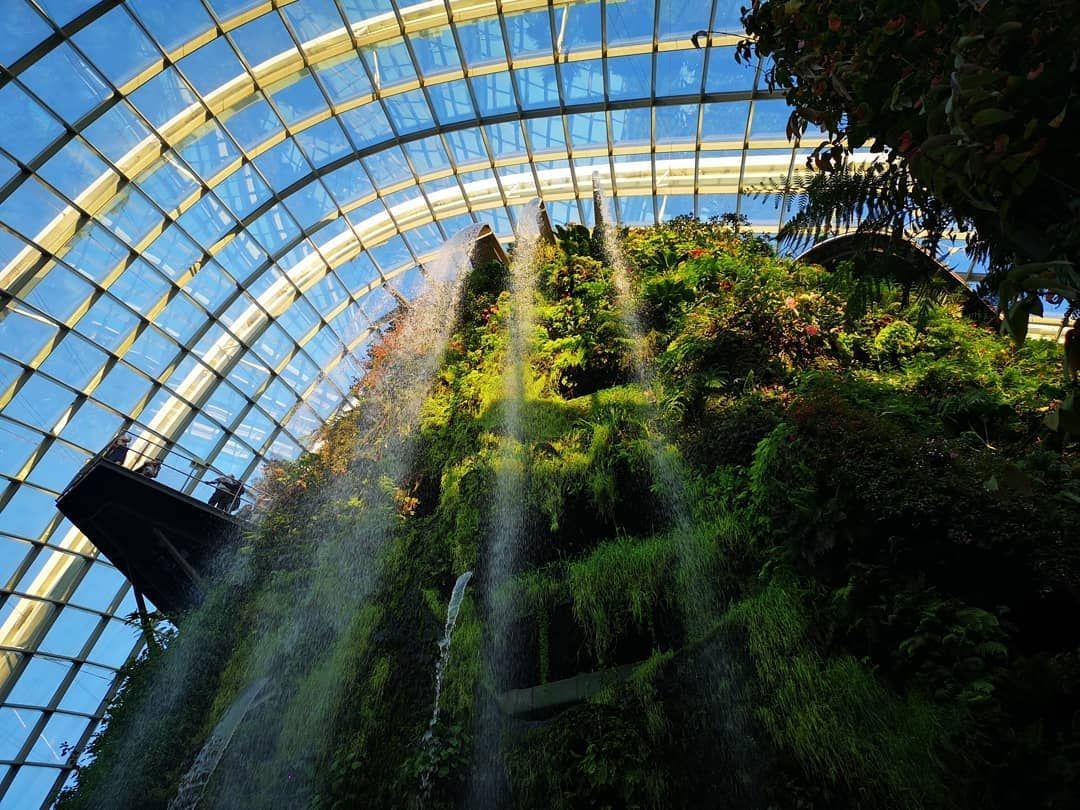 d1d6c74c235925a2e74ddfc68d320943 - Gardens By The Bay Cloud Forest Dome