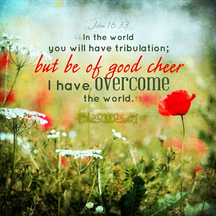 In The Word You Will Have Tribulation But Be Of Good Cheer I Have