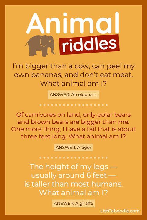 Fun Animal Riddles: Elephant, Tiger, Giraffe
