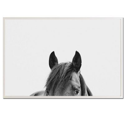 Pampa horse 30 black and white
