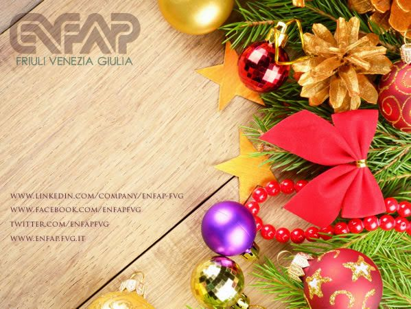 Buone Feste e Buon Anno dal Comitato Regionale dell'ENFAP del Friuli-Venezia Giulia!