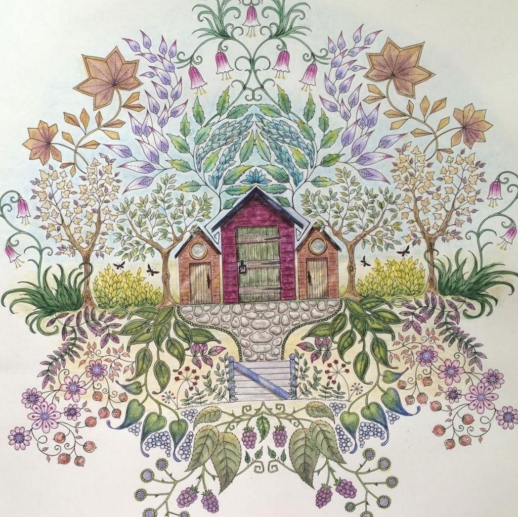 Drawing flowers doodles secret gardens drawingeyes