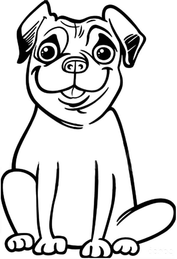 Pug Coloring Pages Dolphin Coloring Pages Dog Coloring Page