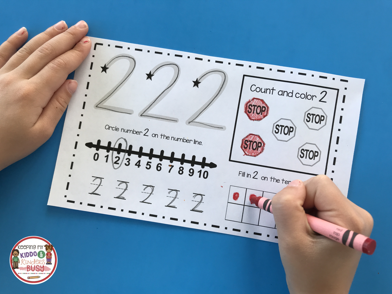 Counting and Cardinality FREEBIES | Pinterest | Free activities ...