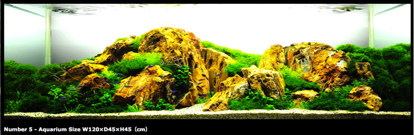 Mountain Landscape Style, Aquascape