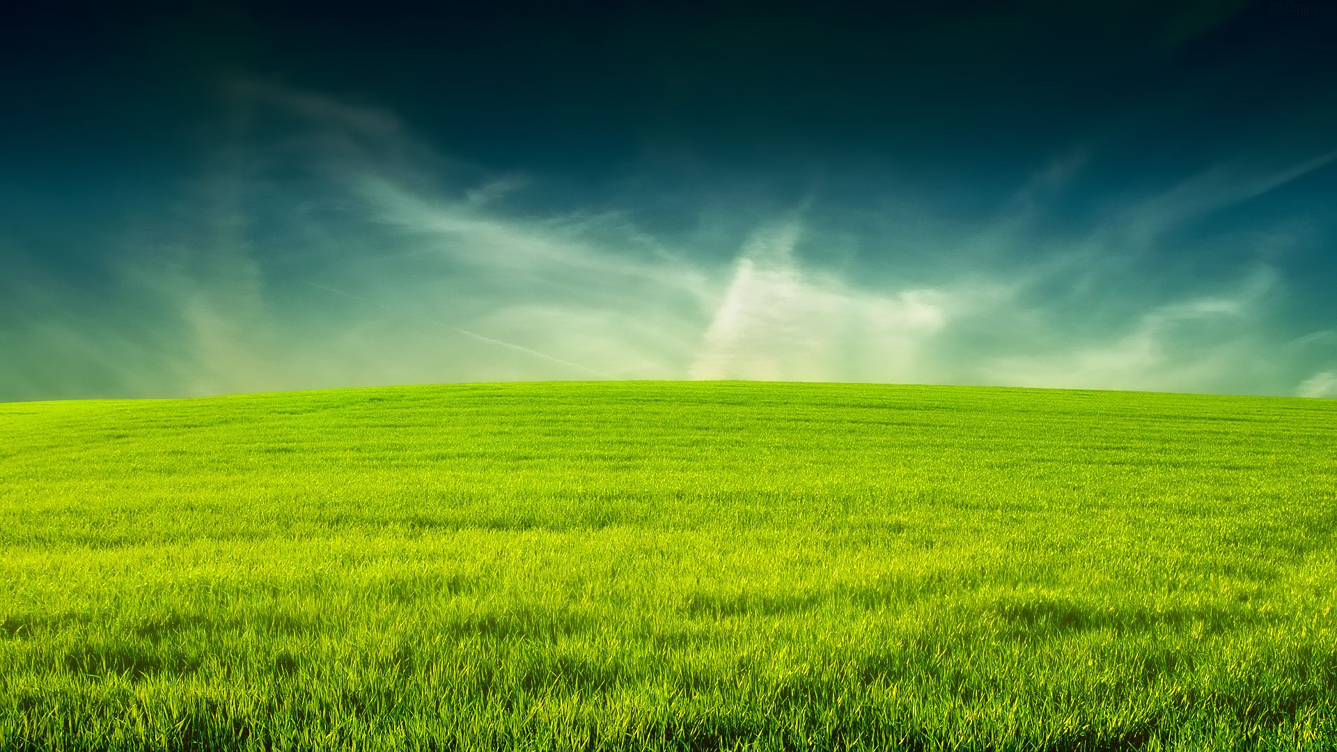 cdc95e0e9bc Descargar gratis campo, Verde, hierba Fondos de escritorio en la resolucin  1920x1080 — imagen №340879