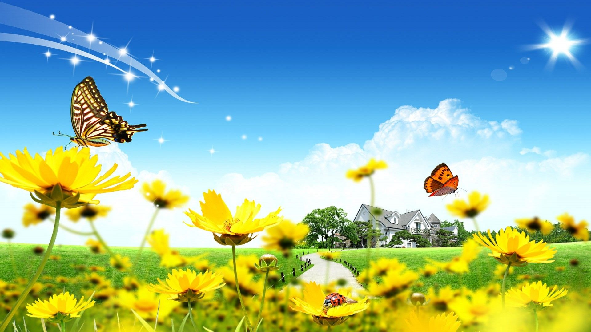 Yellow Sunflowers With Butterflies Scenery Wallpaper