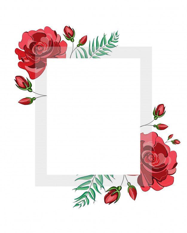 Moldura Quadrada De Flores Rosas Vermelhas Flor Com Moldura Transparente Branca Quadrada Para Texto Veto Molduras De Quadros Molduras Vermelhas Rosas Vermelhas