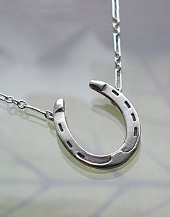 Sacred silver sterling silver horseshoe necklace jewelry sacred silver sterling silver horseshoe necklace aloadofball Gallery