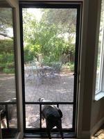 Comfort-Bilt Pet Breeze White Aluminum Frame Hinged Pet ...