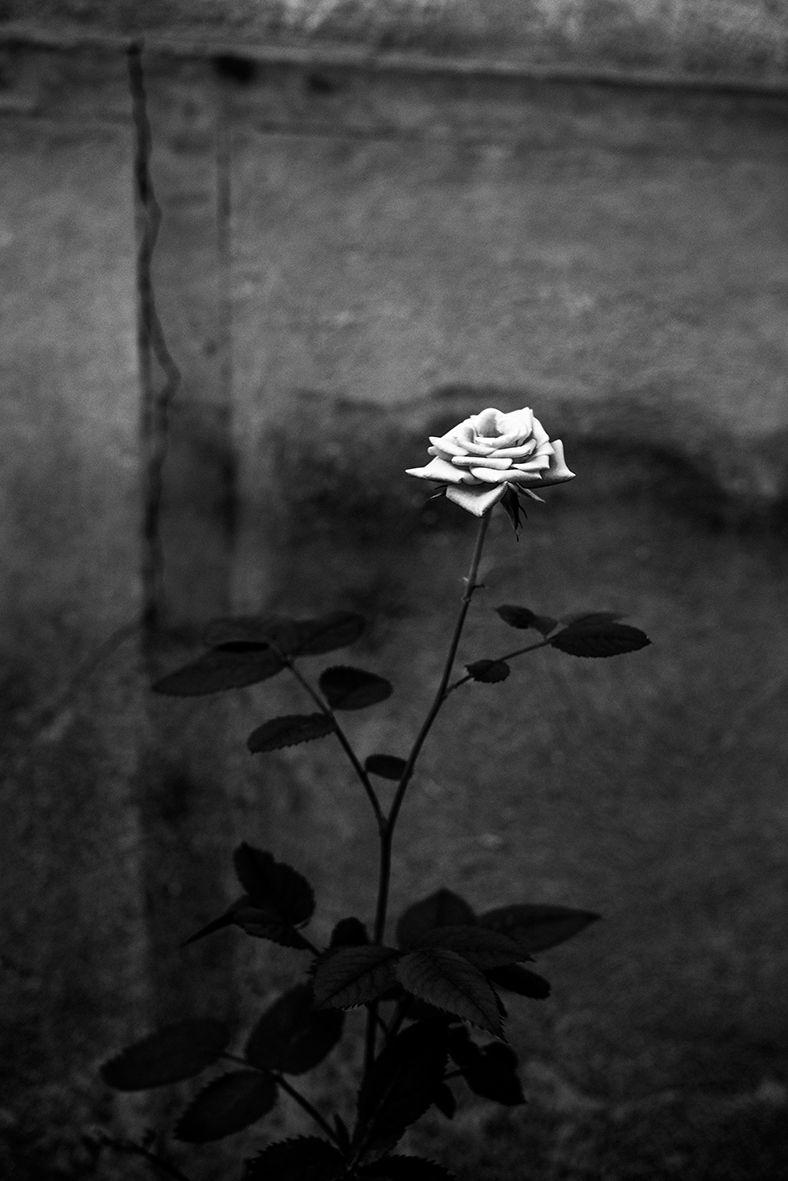 грустные картинки в темных тонах этим неординарным