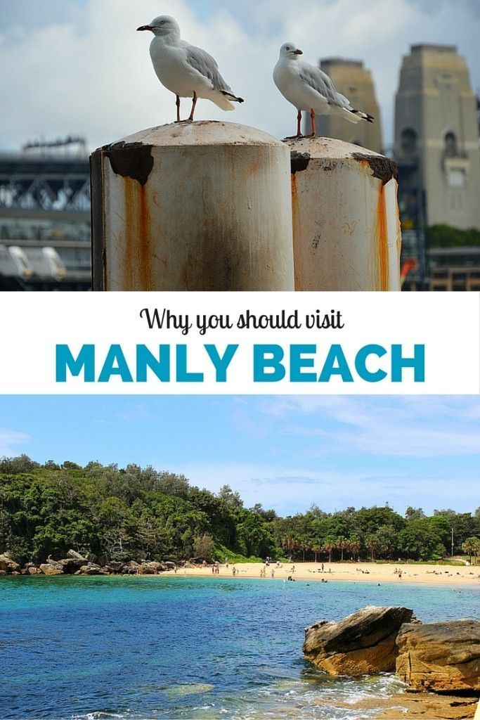 5 reasons why you should visit Manly Beach in Sydney, Australia (hint: the locals like it more than Bondi!)