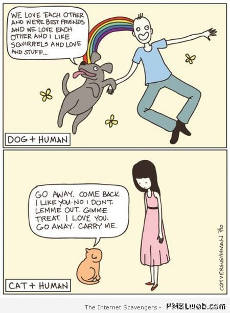 Wednesday guffaws – A collection of Hump Day funnies | PMSLweb