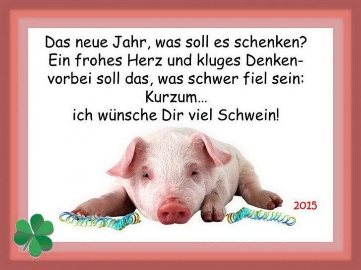 funpot: Gluecksschwein 2015.jpg von Febimaus