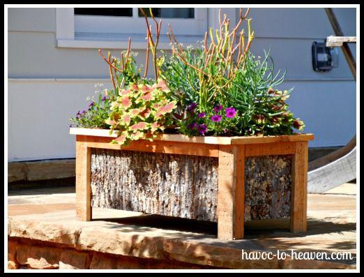 woodsy planter!