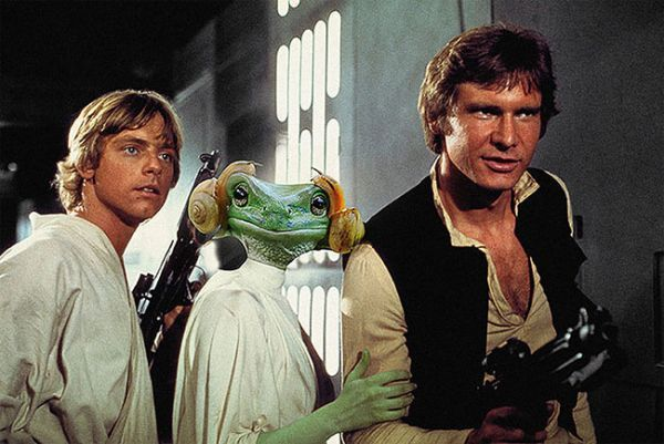 Frog That Looks Like Princess Leia Is Caught In The Middle Of A Photoshop Battle - Neatorama