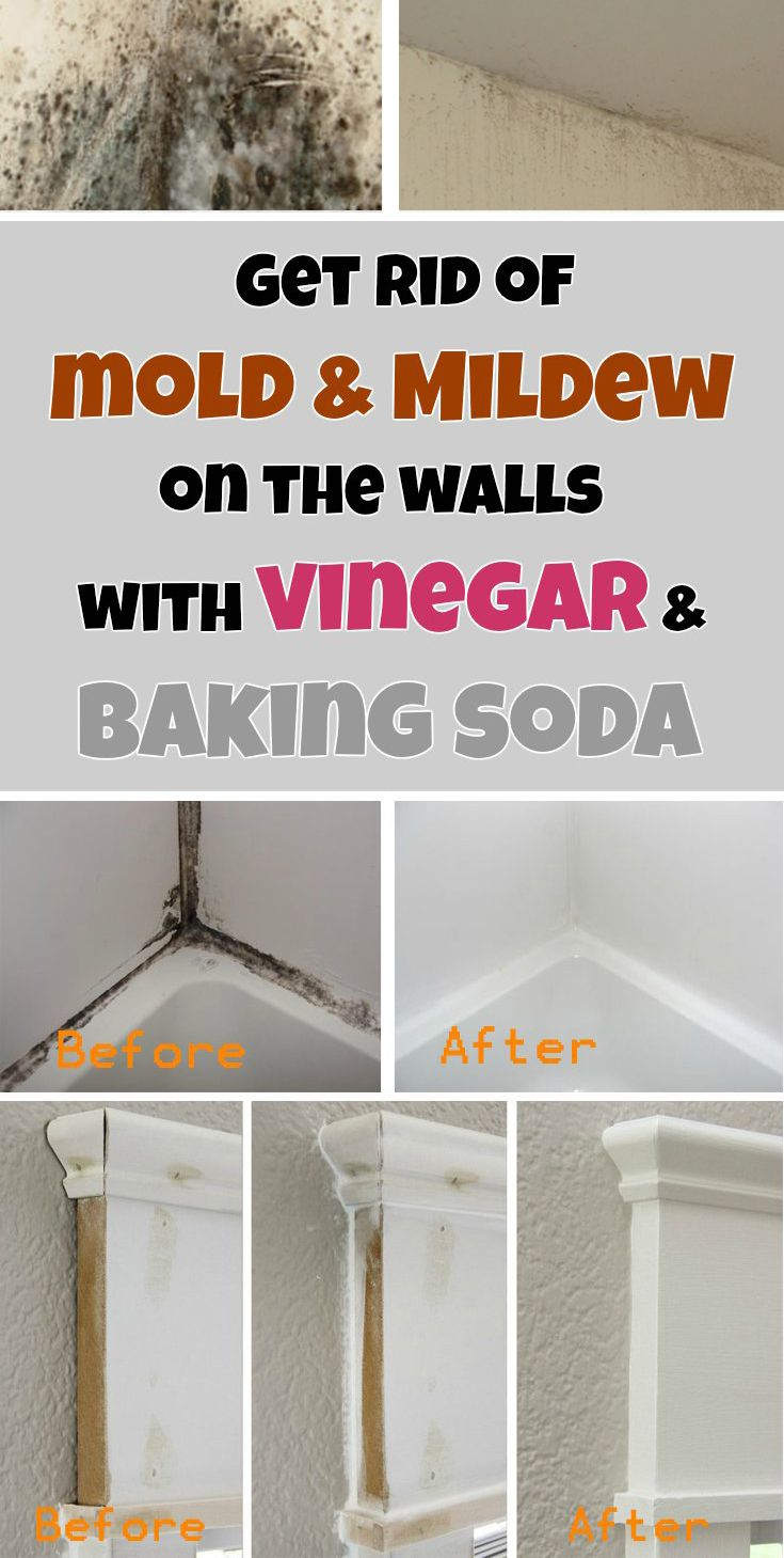 Get rid of mold u mildew on the walls with vinegar and baking soda