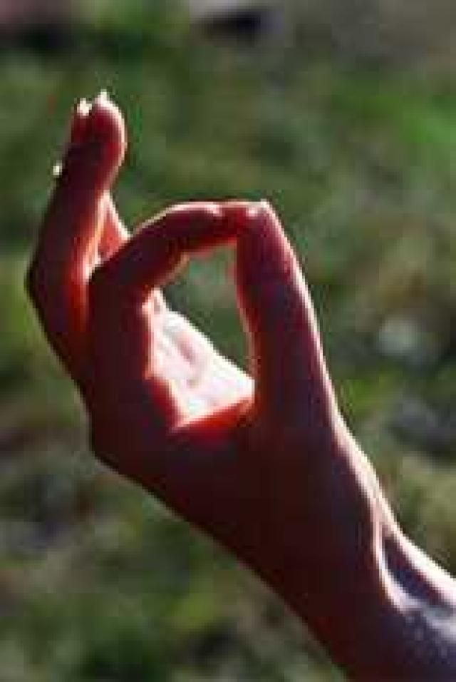 Kundalini Yoga: Detoxification | 3HO Foundation ...