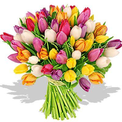 Mazzo Di Fiori Amicizia.Bouquet Tulipani Colorati Amicizia Auguri Buoncompleanno