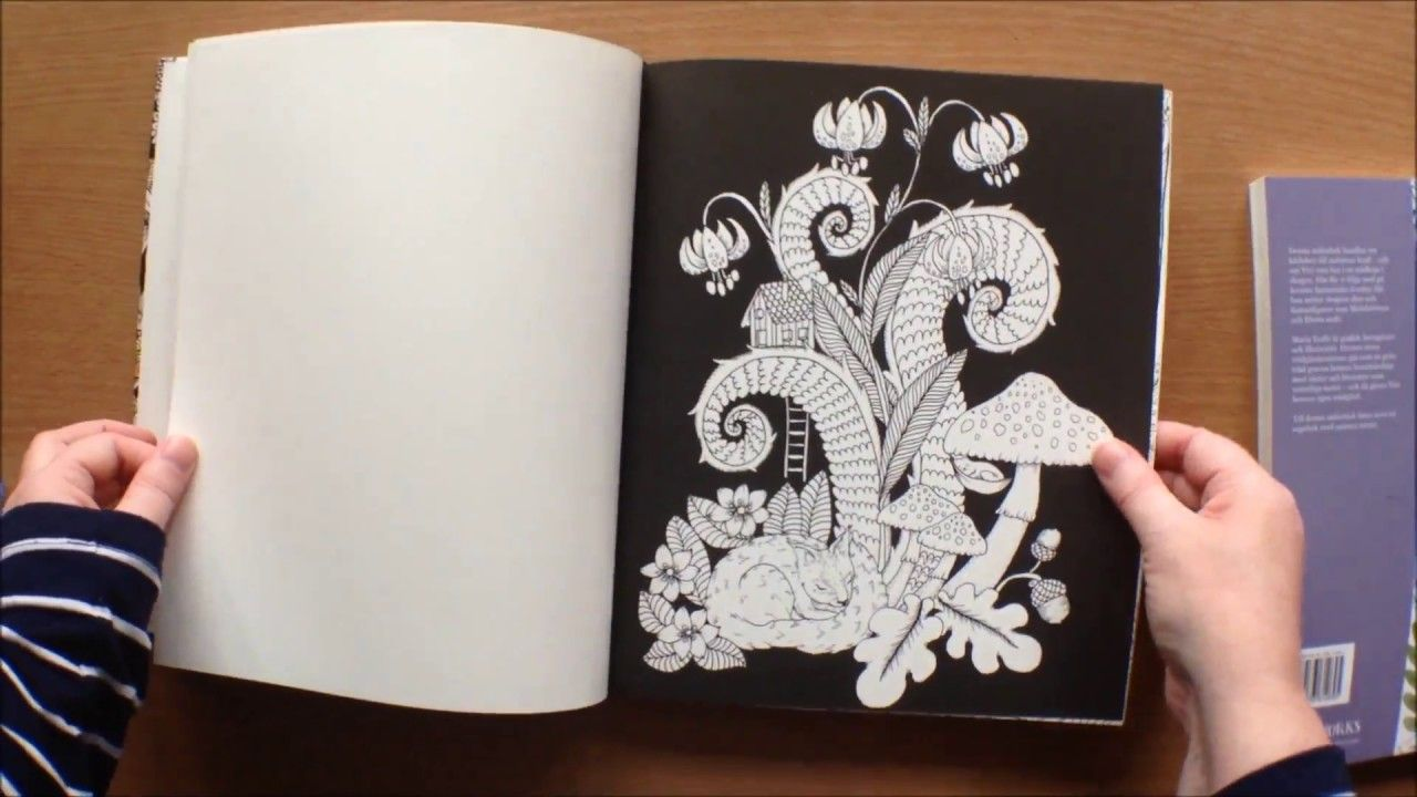 Droomreis By Maria Trolle Colouring Book Flip Through Vivi Soker En Va