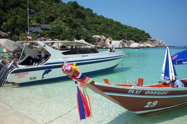 Koh Tao and Koh Nang Yuan Tour By Speedboat, Samui   EZY-Go.com