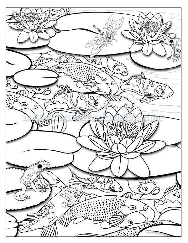 pond coloring pages Kuvahaun tulos haulle koi pond colouring pages | Sammakot/Kalat  pond coloring pages