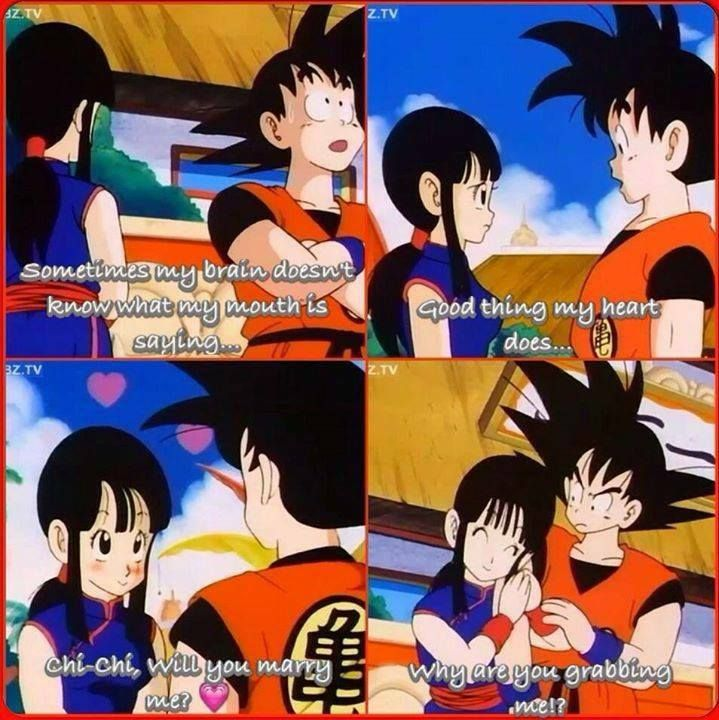 Pin On Goku And Chichi