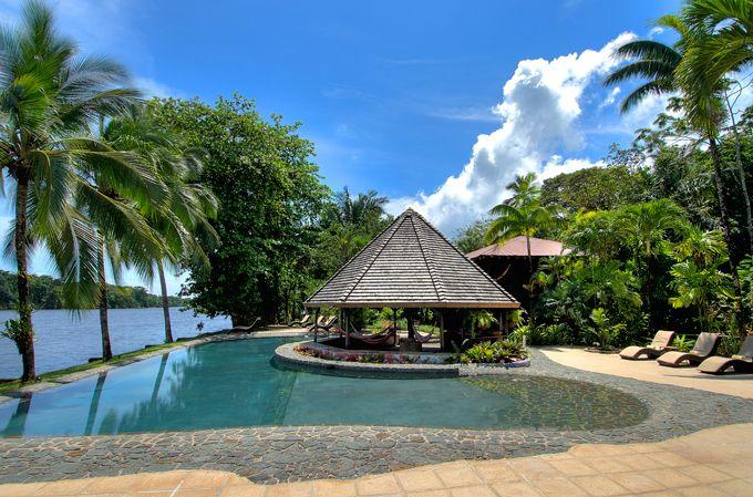 d1e19ab3d6e43166737a34d75d93dd5e - Tortuga Lodge And Gardens Costa Rica