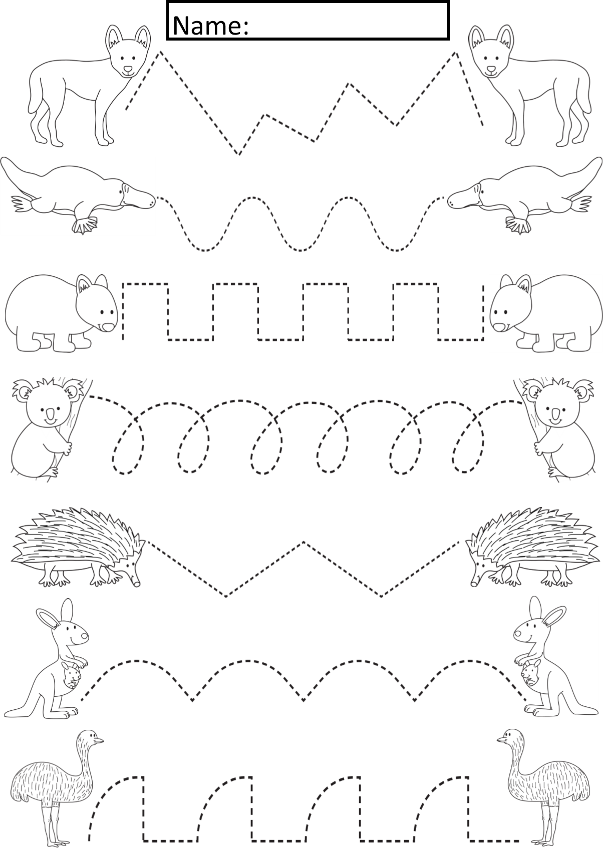 Australian Animals Tracing Lines Activity For Early Years
