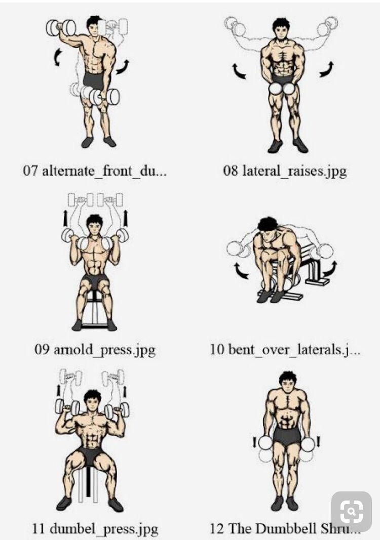Gym Rutina Supuestamente Hay Que Entrenar 3 Días Semanales Gym Por Cada Día 2 Músculos Mínim Ejercicios Ejercicios Con Mancuernas Rutina De Hombros