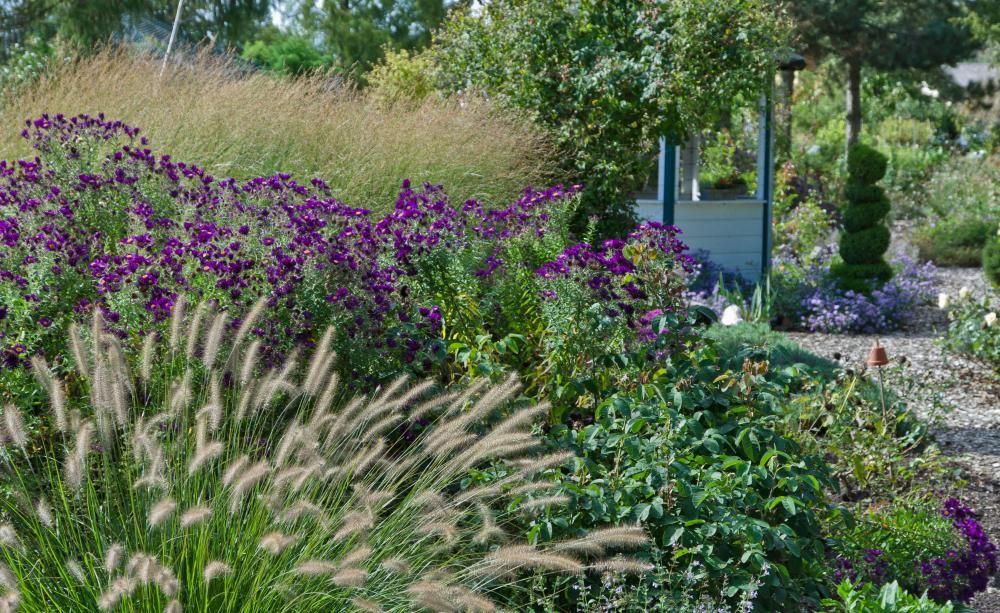 Gestaltungsideen Mit Gräsern Und Stauden Ziergärten Pinterest