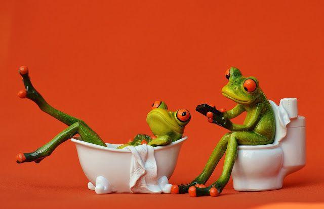 Pin Von Nayraa Morgan Auf أضحك من قلبك نكت مضحكة Http Www Woch24 Tk 2017 07 Blog Post 14 Html Badezimmer Bilder Frosch Dekorationen Frosche