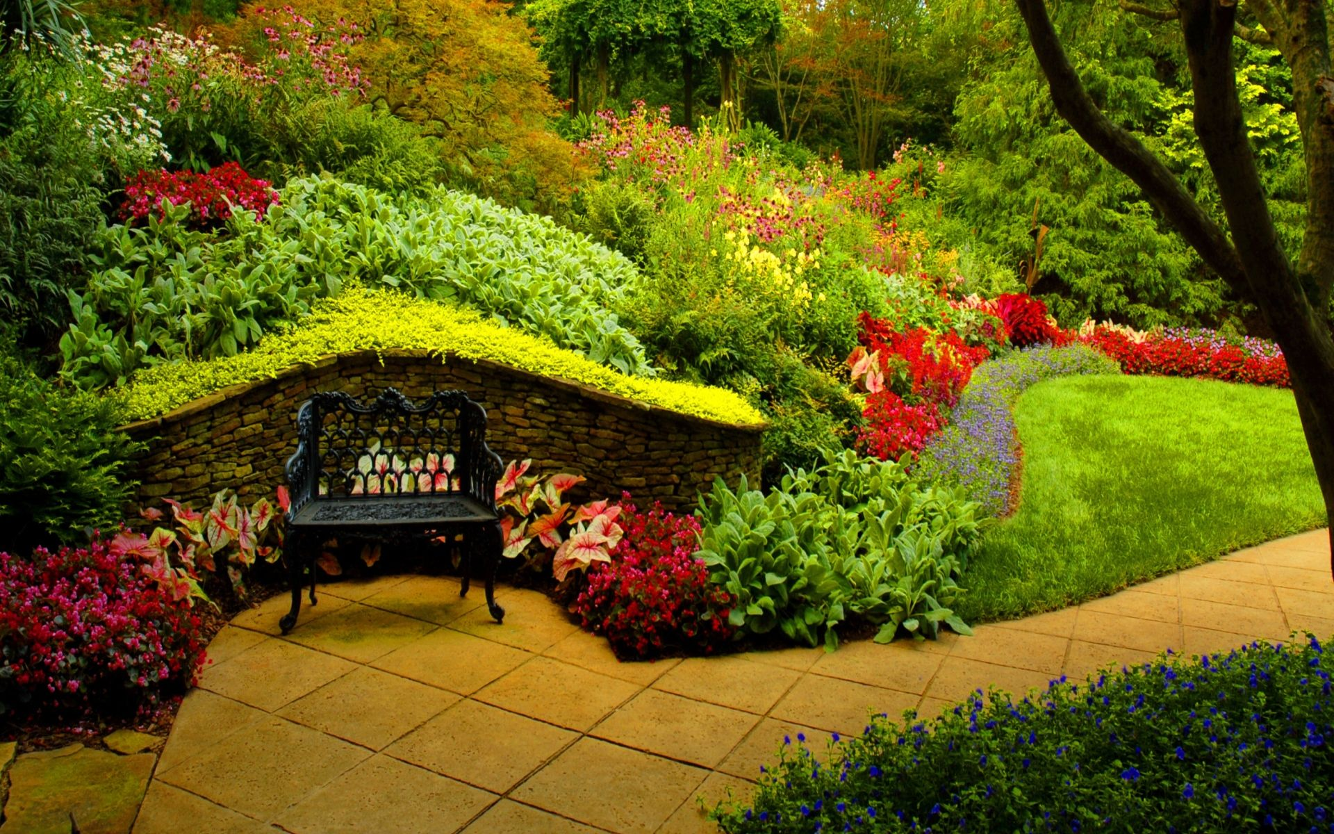 Garden Background Hd Photo