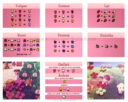 Flower Animal Crossing New Leaf Wiki Fandom Powered By Wikia