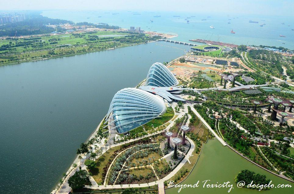 """El """"Cooled Conservatories at Gardens by the Bay"""", un magnífico complejo de jardines botánicos, levantado frente a la bahía de Singapur; fue elegido como el """"Edificio del Año"""", en el Festival Mundial de Arquitectura 2012"""