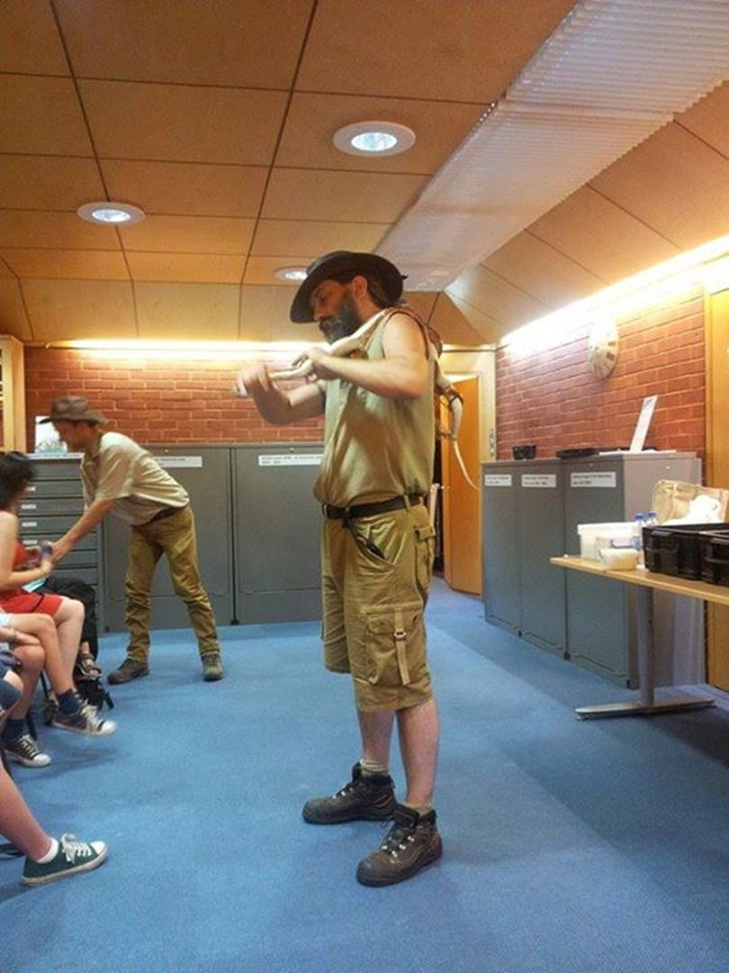 Berkshire Reptile Encounters - Childrens Entertainers, Educational Shows, Party Entertainment