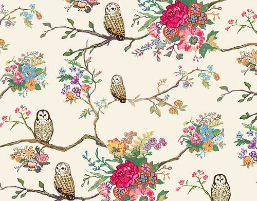 #owl #pattern #floral