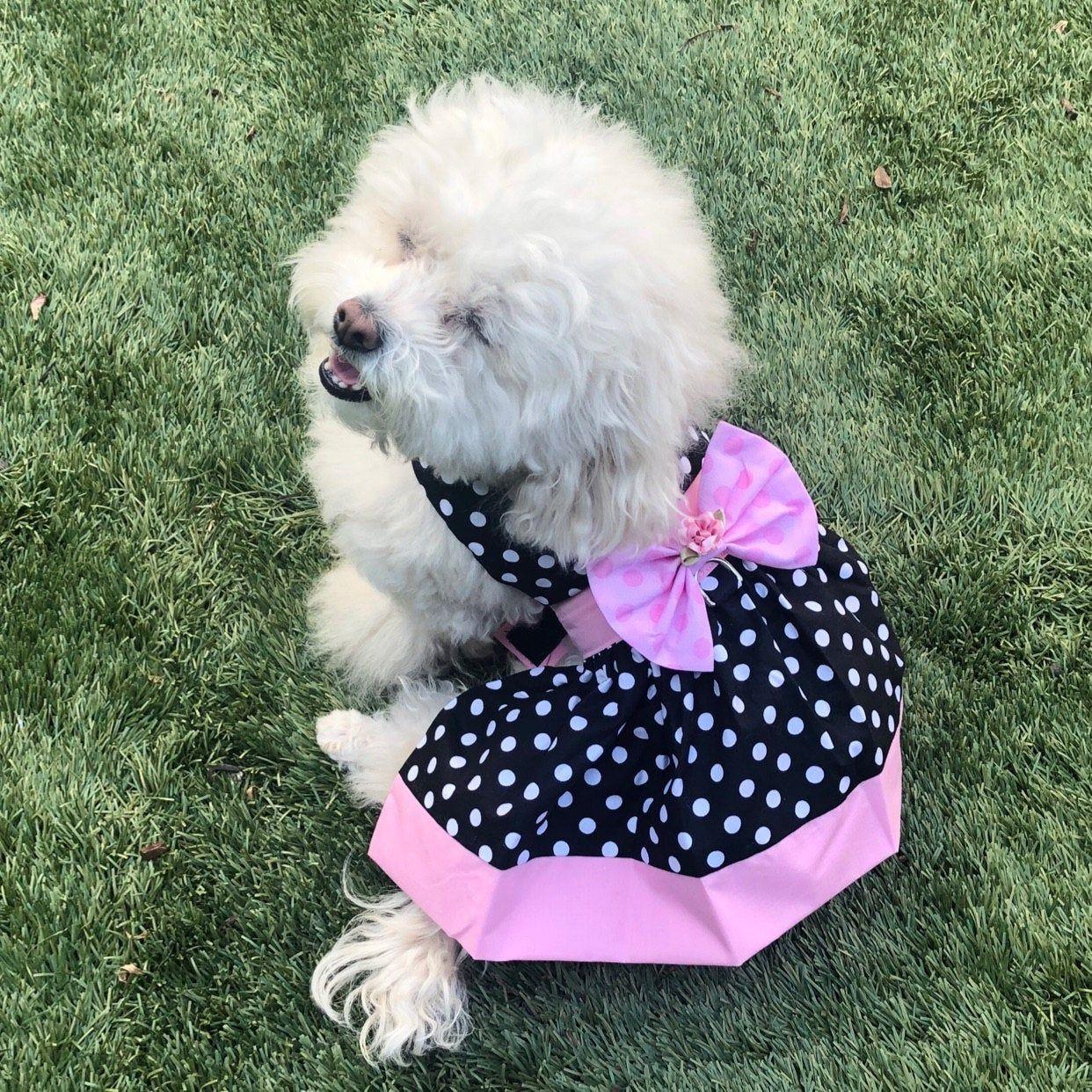 Pink Banded Polka Dot Dog Harness Dress Xxxs Xxs Xs S M Dog
