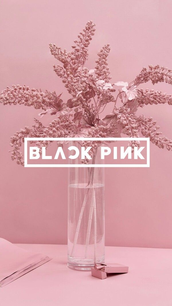 Wallpaper Com Imagens Blackpink Wallpaper Papel De Parede Kpop Planos De Fundo