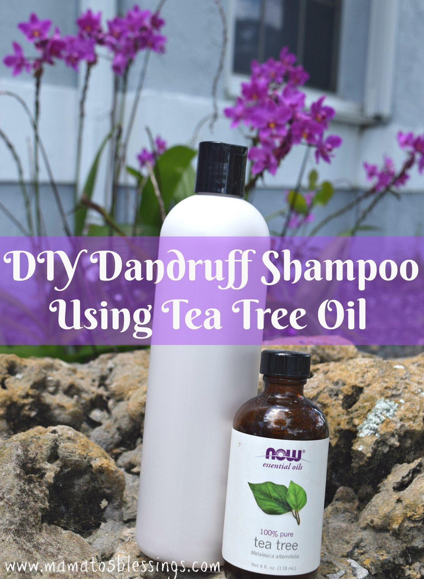 diy dandruff shampoo using tea tree oil | fashion / beauty , fashion