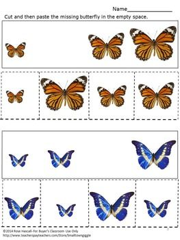 butterflies sorting by size cut and paste fine motor skills special education speech language. Black Bedroom Furniture Sets. Home Design Ideas