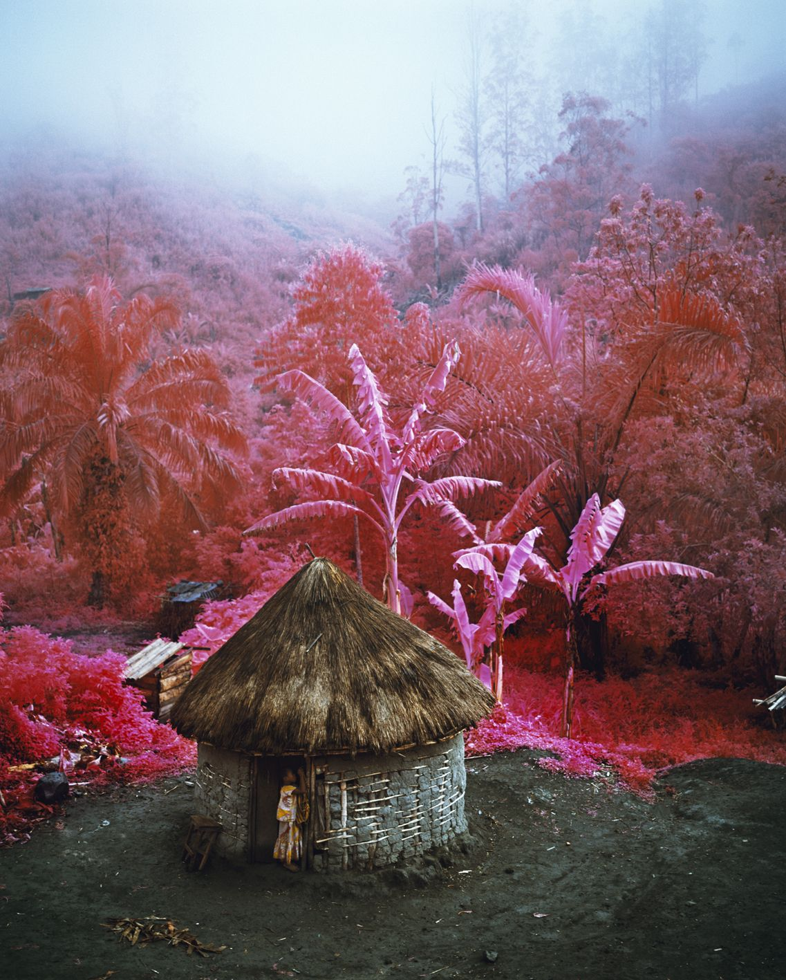 Kodak S Retired Infrared Film Creates A Hot Pink Congo Richard Mosse Infrared Photography Photography
